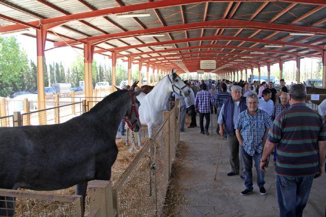 Puerto Lumbreras acogerá este fin de semana la tradicional Feria de Ganado Equino 2015 - 1, Foto 1