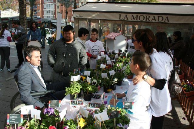Los alumnos del Colegio de Educación Especial Eusebio Martínez y su excelente Mercadillo de Plantas - 1, Foto 1