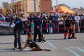 La exhibición de la nueva unidad canina de la Policía Local torreña, un éxito