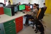 La ONCE cede un software a la UPCT para desarrollar materiales docentes adaptados a invidentes