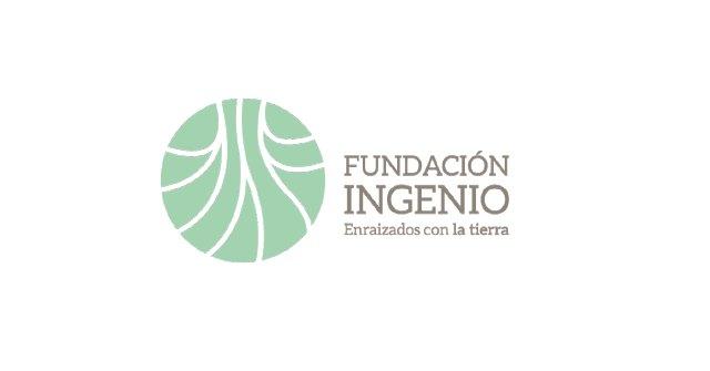 La Fundación Ingenio comparece en la Asamblea: No dejemos a nadie atrás - 1, Foto 1