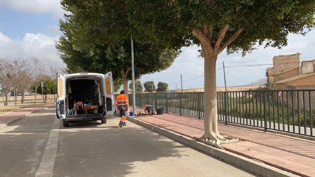 El Ayuntamiento procede a la mejora del alumbrado en la avenida de las Américas de Roldán - 3, Foto 3