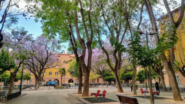 La Asociación de Vecinos de Vistabella pide una reunión con el alcalde de Murcia - 1, Foto 1
