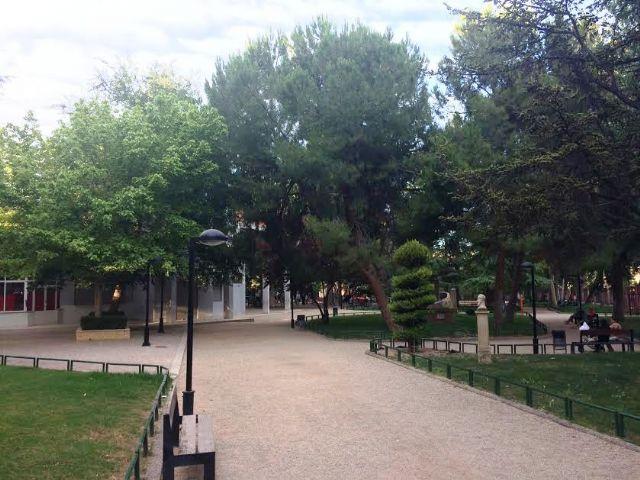 Realizarán trabajos de mantenimiento del arbolado de grandes dimensiones ubicado en el parque municipal Marcos Ortiz durante este lunes y martes, Foto 3