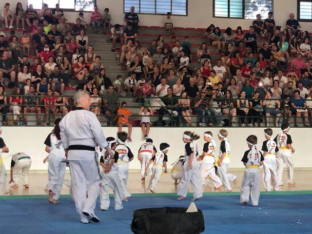 El Club Taekwondo Totana clausura temporada con una exhibici�n de sus m�s de 80 alumnos en el Pabell�n de Deportes Manolo Ib�ñez, Foto 3