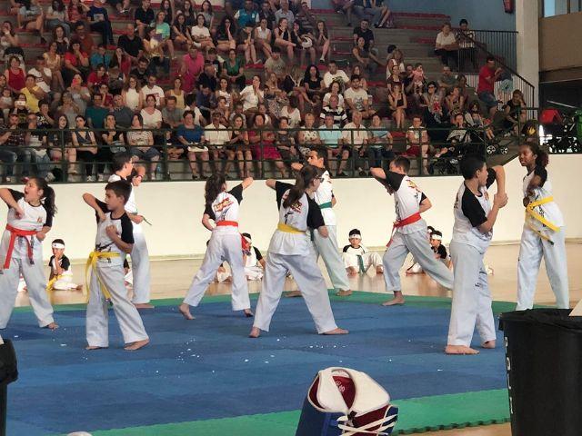 El Club Taekwondo Totana clausura temporada con una exhibici�n de sus m�s de 80 alumnos en el Pabell�n de Deportes Manolo Ib�ñez, Foto 6