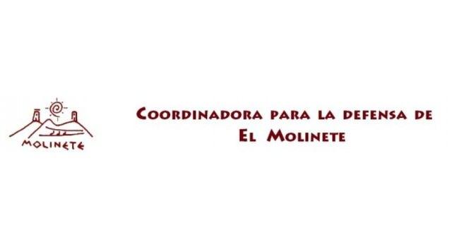 La Coordinadora del Molinete exige al Gobierno Municipal que no venda el yacimiento de Morería - 1, Foto 1
