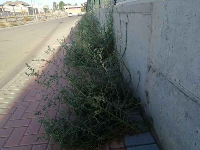 El Partido Comunista insta al gobierno municipal a que adecente el entorno del Recinto Ferial - 1, Foto 1