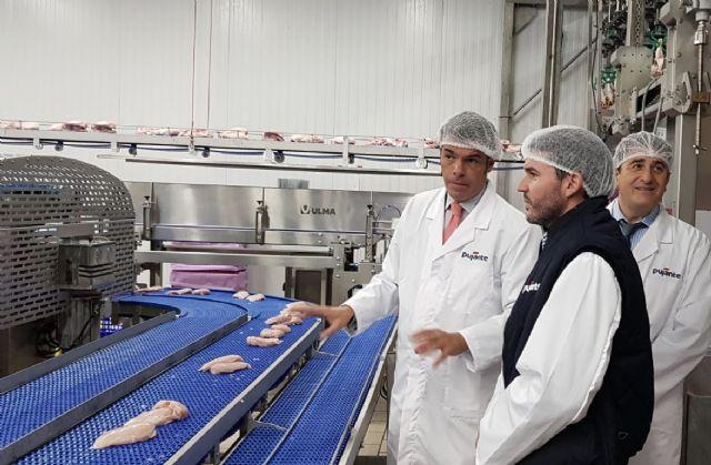 El sector del pollo espera cerrar 2019 con un crecimiento en la producción de carne por tercer año consecutivo - 1, Foto 1