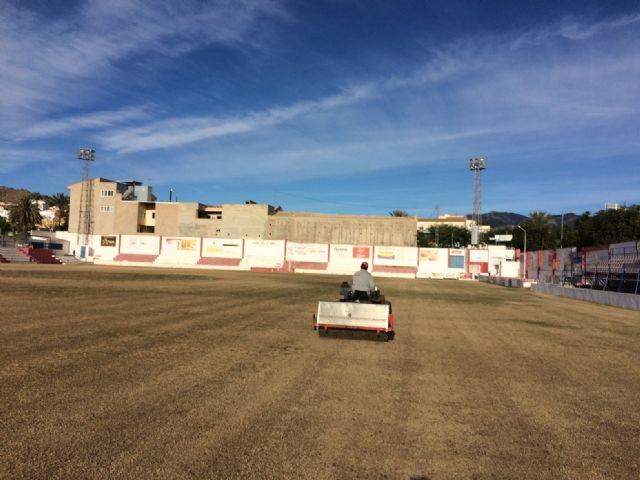 Resiembran el campo de fútbol del estadio municipal Juan Cayuela para garantizar su conservación y mantenimiento hasta el final de la temporada, Foto 3