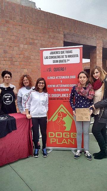 El Colegio Reina Sofía participó en la carrera solidaria a beneficio de la Asociación Refugio del Viento, Foto 6
