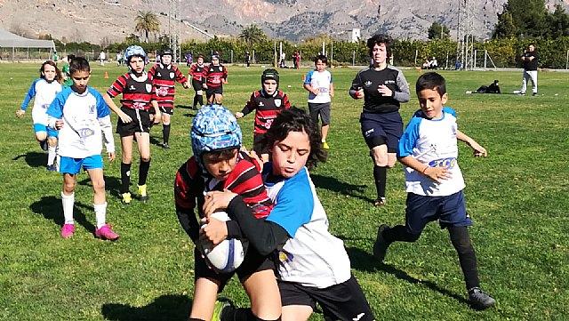 Los partidos del club rugby Totana, en las categor�as sub 8 sub 10 y sub 12, se disputaron ayer en Orihuela, Foto 5