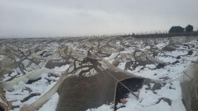 La Comunidad subvencionará con hasta 80.000 euros los daños causados por el temporal de nieve en infraestructuras agrarias, Foto 2