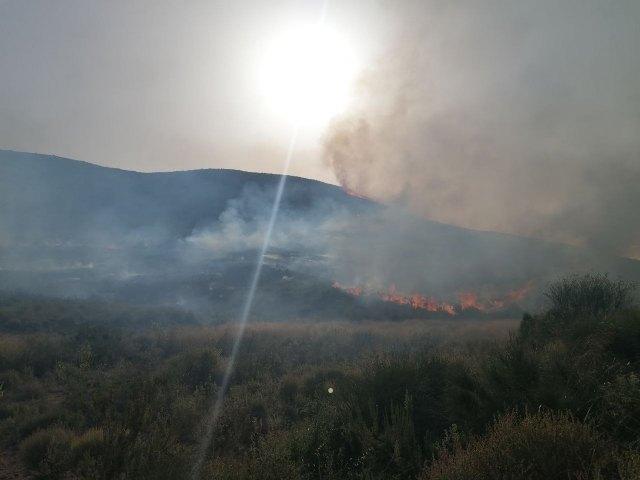 Incendio forestal en Fuente Álamo - 1, Foto 1