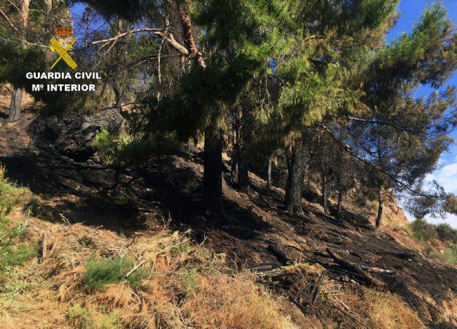 La Guardia Civil investiga a tres menores por dos incendios en el paraje El Menjú de Cieza - 3, Foto 3