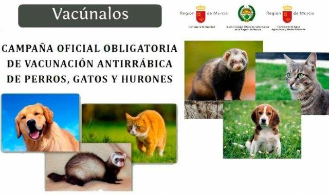 Comienza la campaña anual de vacunación antirrábica obligatoria para los animales de las especies canina, felina y hurones