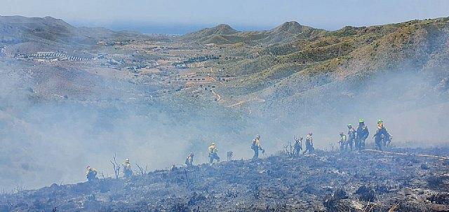 Incendio forestal en Fuente Álamo - 3, Foto 3