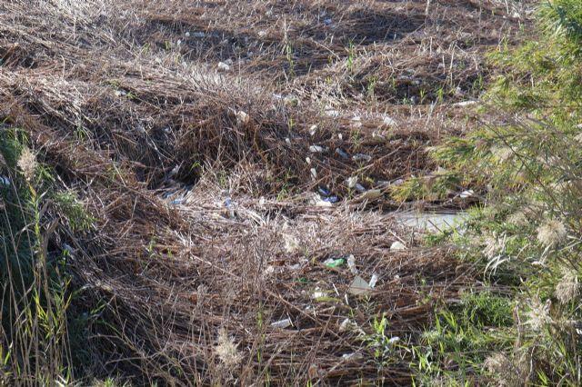 Huermur denuncia la inacción de la CHS ante los miles de plásticos y envases que se acumulan en el Río Segura, Foto 1