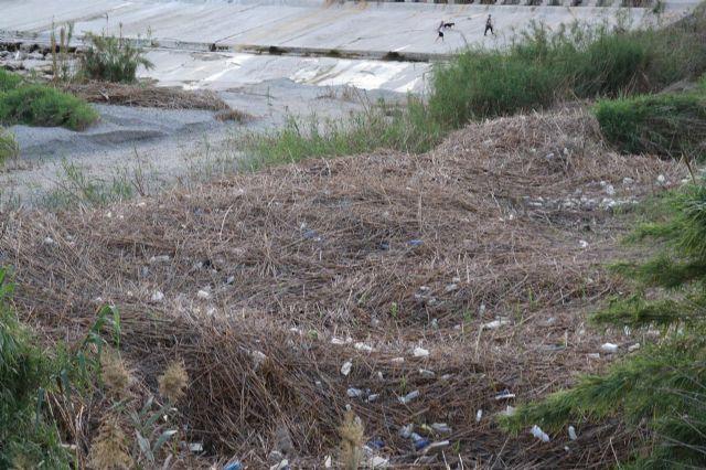 Huermur denuncia la inacción de la CHS ante los miles de plásticos y envases que se acumulan en el Río Segura, Foto 2