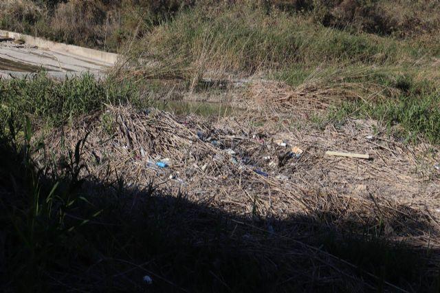 Huermur denuncia la inacción de la CHS ante los miles de plásticos y envases que se acumulan en el Río Segura, Foto 3