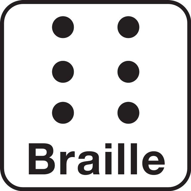 España se convierte en el primer país del mundo en incluir el alfabeto Braille como sistema de lectura en medicamentos veterinarios - 1, Foto 1