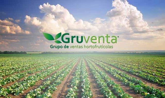 """GRUVENTA pide a 2019 un año """"con mayor internacionalización"""" para el sector hortofrutícola español - 1, Foto 1"""