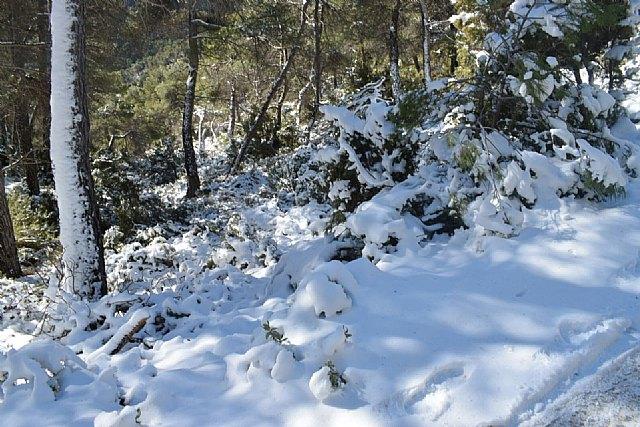 Temporal de frío y nieve, Foto 1