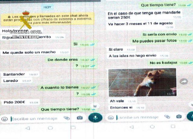 La Guardia Civil destapa un entramado delictivo de estafas online - 2, Foto 2