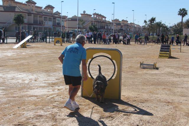 San Pedro del Pinatar cuenta con un parque agility canino con más de una decena de obstáculos - 2, Foto 2