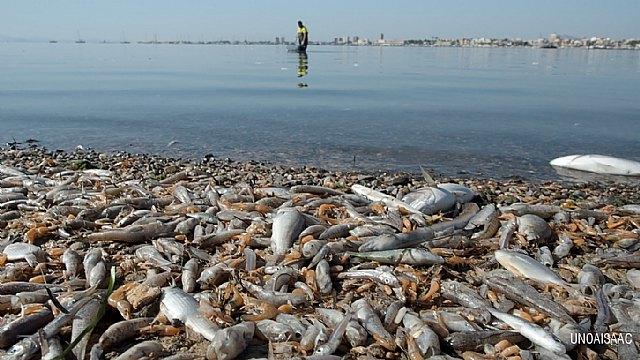El Convenio de Barcelona de Naciones Unidas anuncia que entrará al fondo de la queja sobre el Mar Menor presentada por Ecologistas en Acción - 1, Foto 1