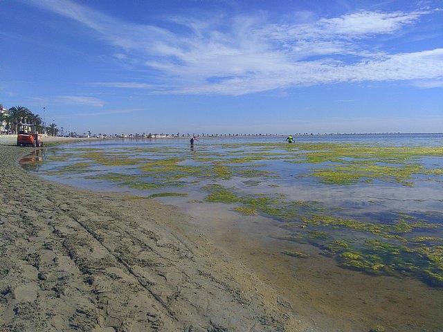 El Convenio de Barcelona de Naciones Unidas anuncia que entrará al fondo de la queja sobre el Mar Menor presentada por Ecologistas en Acción - 4, Foto 4