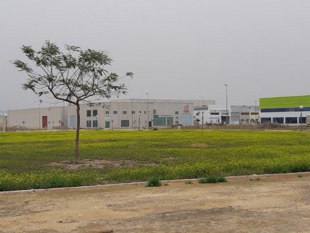 [Proinvitosa oferta parcelas de suelo industrial en el polígono El Saladar de Totana a precios competitivos, Foto 2
