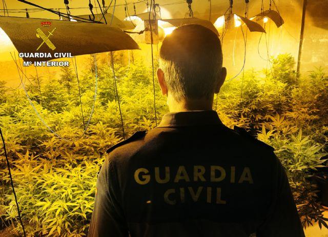 La Guardia Civil desmantela cuatro invernaderos clandestinos de marihuana en Los Alcázares - 3, Foto 3