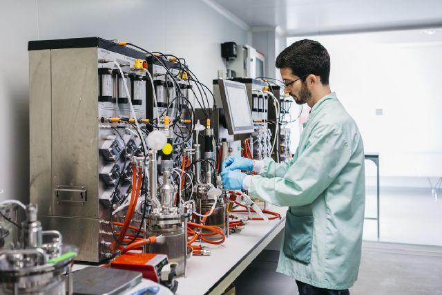 Estudian emplear proteínas de bacteriófagos para el control de la bacteria Xylella fastidiosa en el olivo - 1, Foto 1