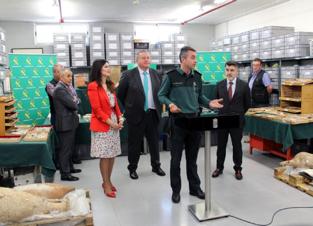 La Guardia Civil recupera cerca de diez mil piezas de valor paleontológico y arqueológico en un domicilio de Murcia, Foto 2