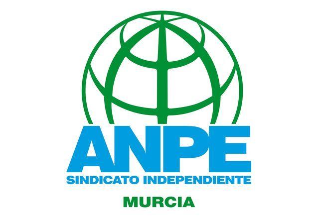 ANPE Murcia presenta al presidente Lopez Mirás propuestas prioritarias sobre las necesidades en los centros educativos de la Región de Murcia - 1, Foto 1