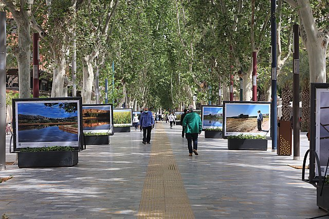 Inaugurada la exposición Entre arrozales del fotógrafo Pedro Navarro Laforet en el paseo Alfonso X el Sabio de Murcia - 2, Foto 2