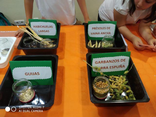 El CEIP DEITANIA obtiene el primer premio en el I Congreso Científico Escolar sobre Agroecología y Sostenibilidad Alimentaria - 2, Foto 2