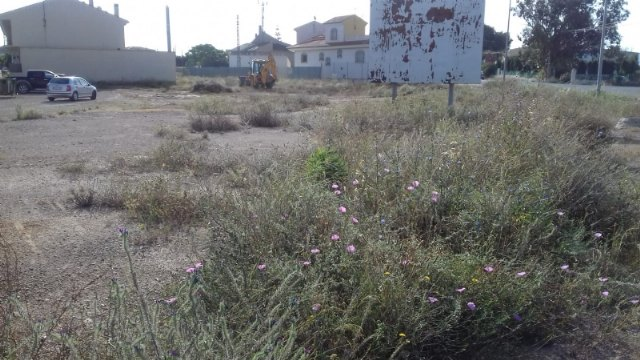 The City Council is carrying out the cleaning of municipal lots in the urban area and the hamlet of El Paretón-Cantareros