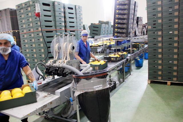 Kettle Produce España prevé ampliar sus instalaciones, Foto 2