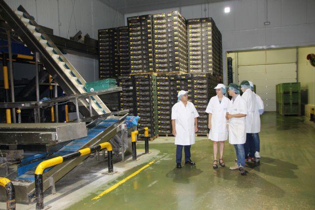 Kettle Produce España prevé ampliar sus instalaciones, Foto 3