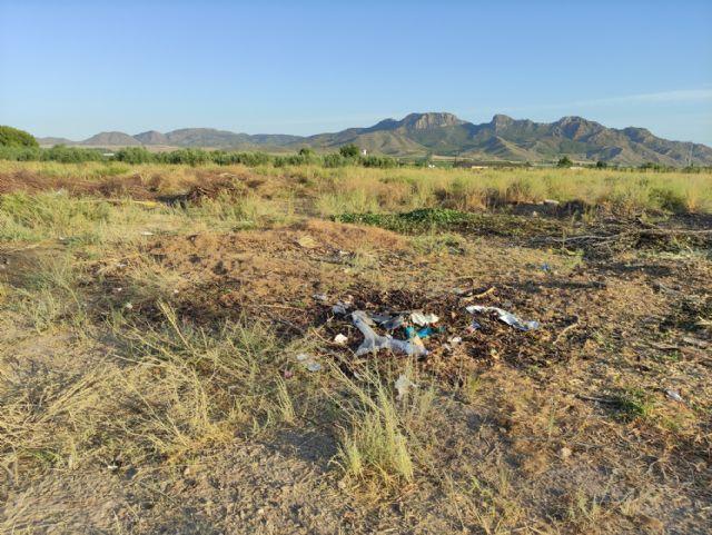 IU VERDES pide explicaciones al concejal de Jardines por la gestión del contrato de limpieza y mantenimiento de jardines - 1, Foto 1