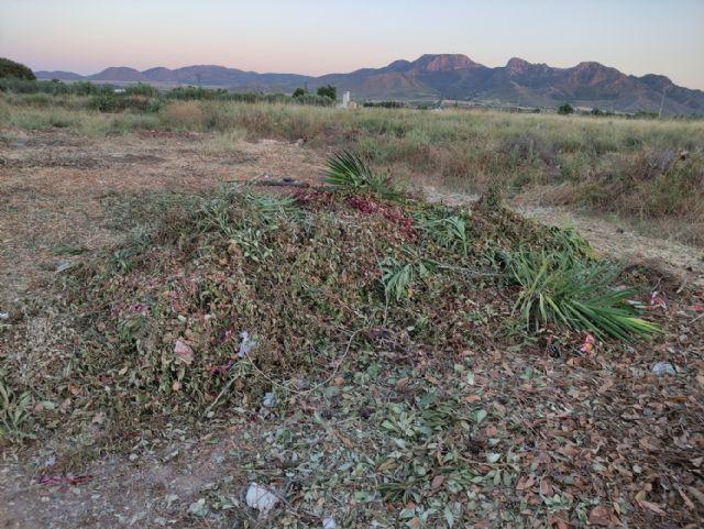IU VERDES pide explicaciones al concejal de Jardines por la gestión del contrato de limpieza y mantenimiento de jardines - 2, Foto 2