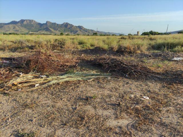 IU VERDES pide explicaciones al concejal de Jardines por la gestión del contrato de limpieza y mantenimiento de jardines - 4, Foto 4