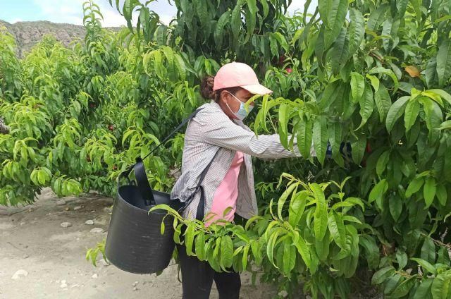 El sector agrario sigue creando empleo durante la crisis - 1, Foto 1