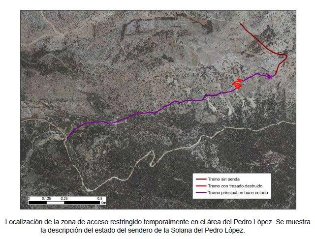 Cierre del acceso a las zonas de nidificación del águila real en Sierra Espuña, Foto 2