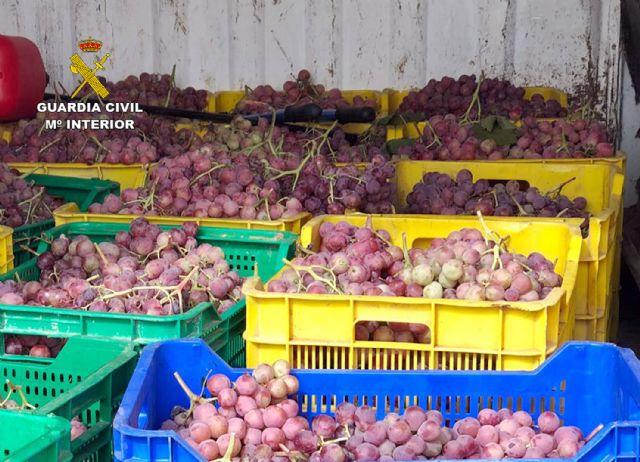 La Guardia Civil desmantela un grupo delictivo dedicado a la sustracción de uva en la comarca del Bajo Guadalentín, Foto 3