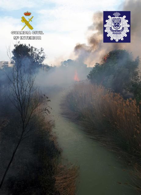 La Guardia Civil y la Policía Local de Archena esclarecen un incendio forestal provocado en la ribera del río Segura - 4, Foto 4