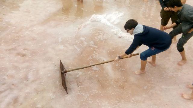 """Más de trescientos estudiantes de enseñanzas medias cosechan su """"salario"""" de sal en Rambla Salada - 1, Foto 1"""