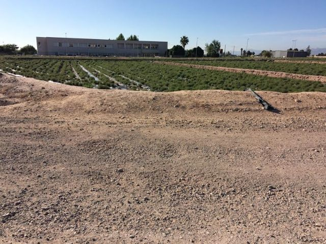 Sacarán a licitación el proyecto de acondicionamiento del vial que da salida al CEIP Luis Pérez Rueda, Foto 1